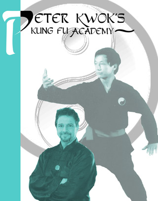 Yang Tai Chi Spear Applications & Push Hands